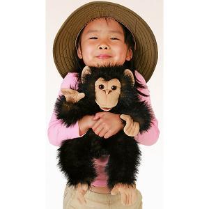 Мягкая игрушка  «Детеныш шимпанзе», 40 см Folkmanis. Цвет: разноцветный
