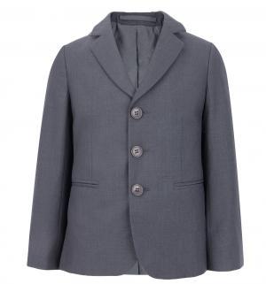 Пиджак , цвет: серый BTC