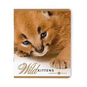 Тетрадь  Дикие котята 48 листов, 5 шт., клетка Альт. Цвет: разноцветный