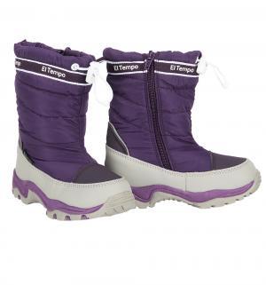 Сапоги , цвет: фиолетовый El Tempo