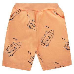 Шорты  Surf, цвет: оранжевый Мелонс