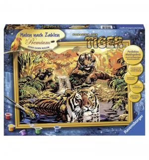 Раскраска по номерам  Тигры 40 х 30 см Ravensburger