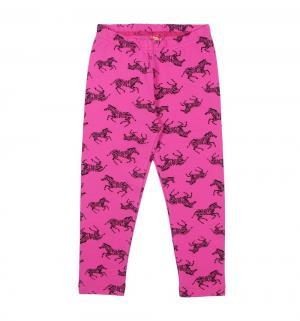 Леггинсы , цвет: розовый Cherubino