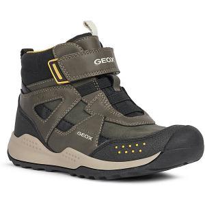 Ботинки Geox. Цвет: хаки/черный