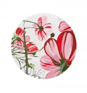 Тарелка десертная  Биа, диаметр: 21 см Biona