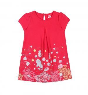 Платье , цвет: красный Cherubino