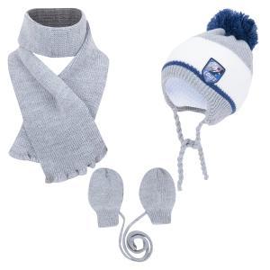 Комплект шапка/шарф/варежки Aliap