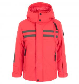 Куртка , цвет: красный/серый Poivre Blanc