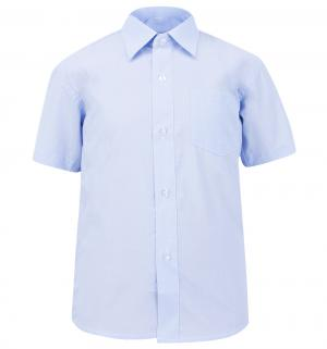 Рубашка , цвет: голубой Rodeng