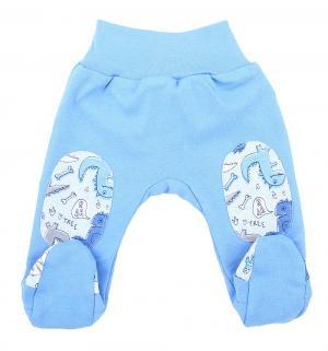 Ползунки  Dino Blue, цвет: голубой Makoma