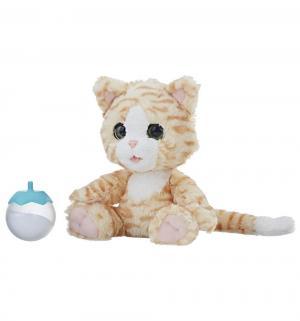Интерактивная игрушка  Покорми котёнка 23 см FurReal Friends