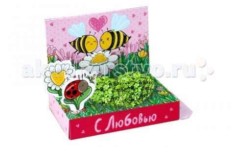 Подарочный набор Живая открытка С любовью! Happy Plant