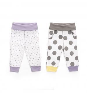 Комплект брюки 2 шт , цвет: белый/фиолетовый Happy Baby