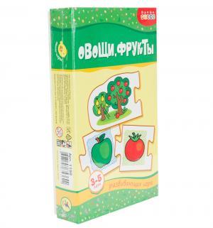Книга Росмэн «Ми. Овощи фрукты» 3+ Дрофа