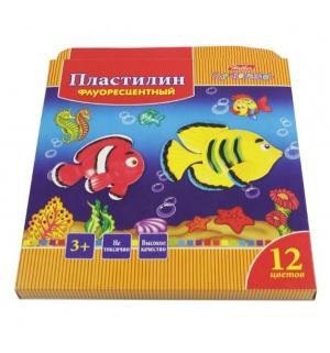 Набор пластилина флуоресцентный  Морская семейка желтый Hatber