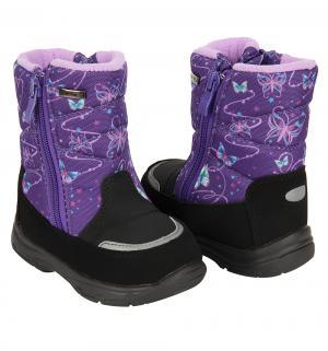 Полусапоги , цвет: фиолетовый El Tempo