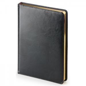 Ежедневник датированный 2021 год Sidney nebraska A5+ 168 листов Альт