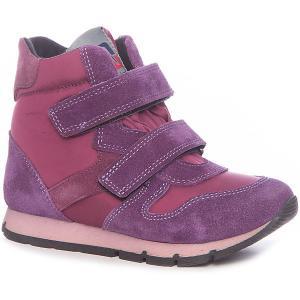 Ботинки для девочки Minimen. Цвет: лиловый