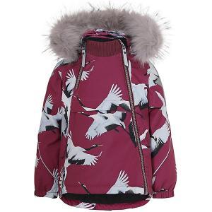 Утеплённая куртка Molo. Цвет: бордовый