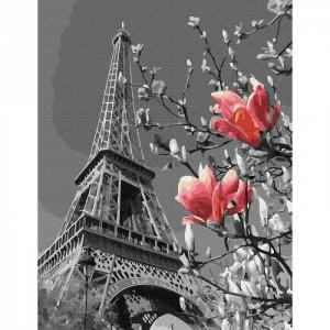 Картина по номерам Весна в Париже 30х40 см Molly