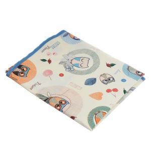 Клеенка  подкладная с ПВХ-покрытием Совы для мальчиков, 1 шт, цвет: белый/голубой Колорит