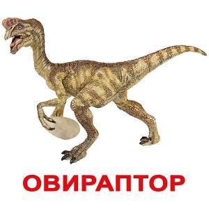 Набор обучающих карточек  Динозавры 20 штук Вундеркинд с пелёнок