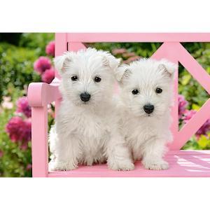 Пазл  Два белых щенка, 1500 деталей Castorland