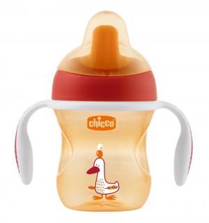 Чашка-поильник  Training cup, цвет: красный Chicco