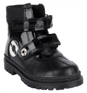 Ботинки , цвет: черный Dandino