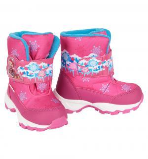 Ботинки  Маша и медведь, цвет: фуксия Kakadu