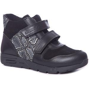 Ботинки  для девочки Dandino. Цвет: черный