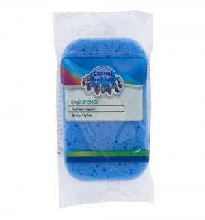 Губка , цвет: голубой Canpol