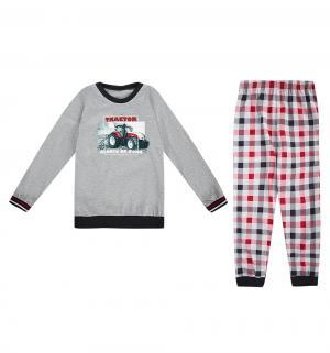 Пижама джемпер/брюки  Tractor, цвет: красный/серый Cornette