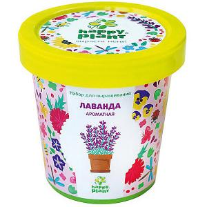 Набор для выращивания Лаванда ароматная Happy Plant