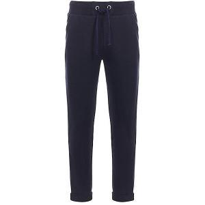 Спортивные брюки Silver Spoon. Цвет: темно-синий