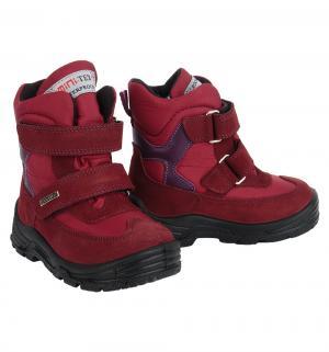 Ботинки , цвет: бордовый Minimen