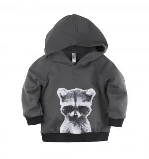 Свитшот  Panda baby, цвет: серый Bossa Nova