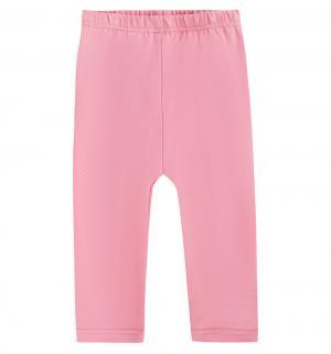 Леггинсы , цвет: розовый Bodo