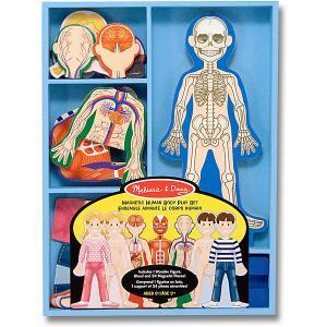 Магнитная игра Melissa&Doug Человеческое тело Melissa & Doug