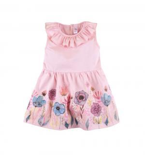 Платье  Алиса, цвет: розовый Bossa Nova