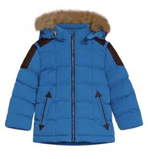 Куртка , цвет: синий Ёмаё