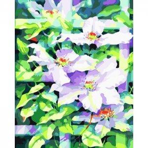 Картина по номерам на подрамнике Цветы под Солнцем 50х40 см Color Kit