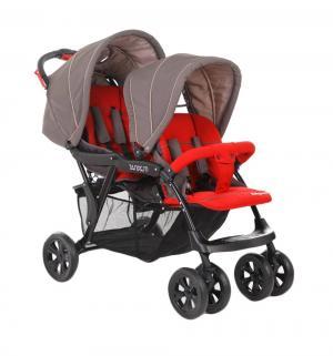 Коляска для двойни  Tandem, цвет: grey/red Baby Care