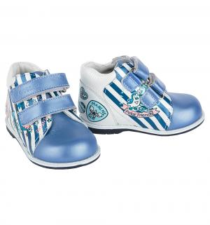 Ботинки , цвет: синий/белый Elegami