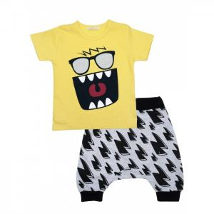 Комплект для мальчика футболка, шорты 6394 Baby Rose