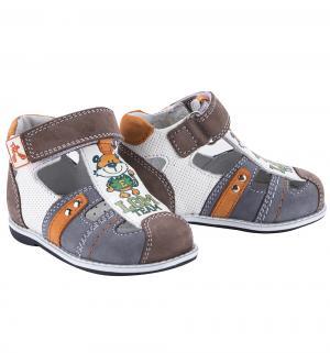 Туфли , цвет: серый/белый Elegami